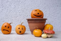 Jack-o-lantern pumpkins. Group of jack-o-lantern pumpkins placed against house wall Stock Photo