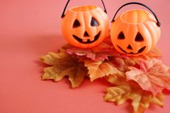 Jack O lantern pumpkins face on autumn leaves Stock Images