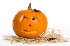 Jack O Lantern With Spiders Stock Photo