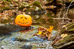 Jack O Lantern in a Stream Royalty Free Stock Images