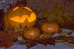 Jack-o-lantern and two yellow pumpkins Royalty Free Stock Photo
