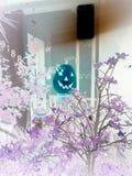 Jack-o'lantern unico Fotografie Stock Libere da Diritti