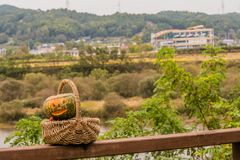 Jack-O-Lantern in wicker basket Stock Images