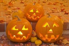 Jack-O-Lanternas de Halloween Fotos de Stock