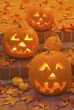 Jack-O-Lanternas de Halloween Foto de Stock