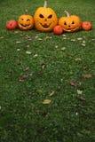 Jack-o-Lanternas de Halloween Imagem de Stock Royalty Free