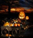 Jack-o-Lanternas de Halloween Fotografia de Stock Royalty Free