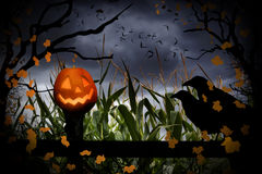 Jack-O-lanterne et corneilles de Halloween Photos stock