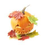 Jack-o'-lanterns orange pumpkin head isolated Stock Photography