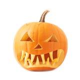 Jack-o'-lanterns orange pumpkin head isolated Stock Image