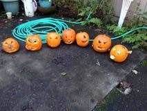 Jack'O'Lanterns scolpito Fotografie Stock Libere da Diritti