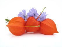Jack-o-lanterns with wildflowers Royalty Free Stock Images