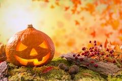 Jack O& x27; Linterna en del otoño todavía de la naturaleza una vida Imagen de archivo libre de regalías