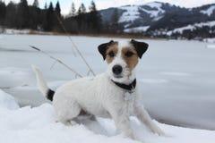 Jack Parson e lago congelato Immagini Stock
