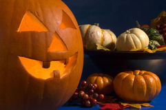 Jack pumpkin. Jack o lantern with gourds and berries on blue stock image