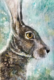 Jack rabbit in meadow charcoal art Stock Photography