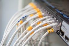 Jack rj45 локальных сетей шел дальше как далеко как переключатель эпицентра деятельности Стоковые Фотографии RF