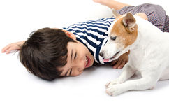 Jack russel with kid playing together royalty free stock photography