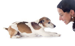 Jack russel terrier and woman Royalty Free Stock Image