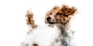 jack russell собаки иллюстрация вектора