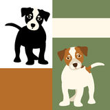 Jack Russell dog vector illustration Flat set Stock Image