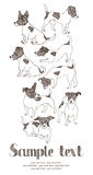 Jack Russell Terrier card. Hand drawn Stock Photography