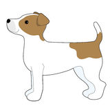 Jack Russell Terrier. A cartoon illustration of a Jack Russell Terrier Stock Photos