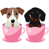 Jack Russell Terrier and Dachshund dog in pink teacup, illustration, set for baby fashion Royalty Free Stock Photo