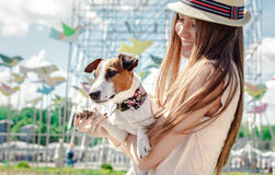 Jack Russell Terrier with beautiful woman Royalty Free Stock Photo