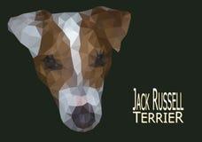 Jack Russell Terrier głowy niska poli- ilustracja Obrazy Stock