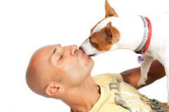 Jack Russell Terrier kiss the master Royalty Free Stock Photo