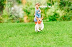 Dog with ball in mouth runs from kid playing chase game at summer lawn Royalty Free Stock Image