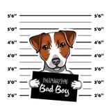 Jack Russell Terrier prisoner. Arrest photo. Police placard, Police mugshot, lineup. Police department banner. Dog. Vector. royalty free illustration
