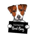 Jack Russell Terrier Prisoner, convict. Dog criminal. Police placard, Police mugshot, lineup. Arrest photo. Mugshot photo. Vector. stock illustration