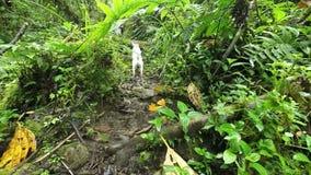 Jack Russell Terrier Slow Motion stock videobeelden