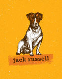 Jack Russell Terrier. Vector Illustration of a dog. Royalty Free Stock Photography