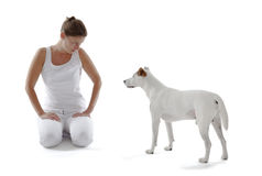 Jack Russell Terrier with Woman Stock Image