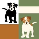 Jack Russell-Vlakke reeks van de hond de vectorillustratie Stock Afbeelding