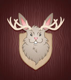 Jackalope Stock Photos