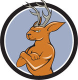 Jackalope Arms Crossed Circle Cartoon. Illustration of a jackalope, a mythical animal of North American folklore described as a jackrabbit with antelope horns or Stock Photo