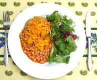 Jacket potato and beans. A plate of jacket potato cheese and beans Royalty Free Stock Image