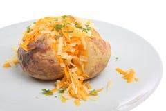 Jacket Potato with Cheese Royalty Free Stock Photos