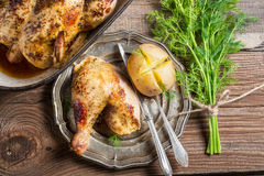 Jacket potato with dill and roasted chicken Royalty Free Stock Photo