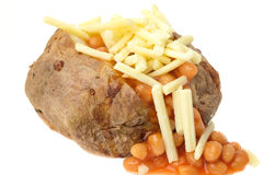 Jacket potato filled with baked beans and grated cheese. Hot jacket potato filled with baked beans and grated cheese - studio shot with a white background Stock Image