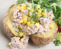 Jacket Potato with Tuna & Sweetcorn Royalty Free Stock Photos