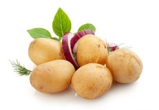 Jacket potatoes with basil, onion and dill stock photography