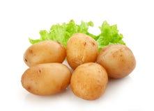 Jacket potatoes with lettuce stock photo