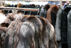 Jackets fur coat hanging and second-hand clothes  for sale in fl Royalty Free Stock Photo