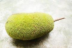 Jackfruit stock foto's