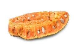 Jackfruit background and texture Stock Image